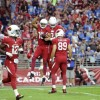 [NFL] Week 11: La difesa ammaestra i leoni (Detroit Lions vs Arizona Cardinals 6-14)