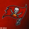 [NFL] Preview 2014: Tampa Bay Buccaneers