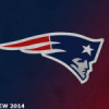 [NFL] Preview 2014: New England Patriots