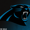 [NFL] Preview 2014: Carolina Panthers