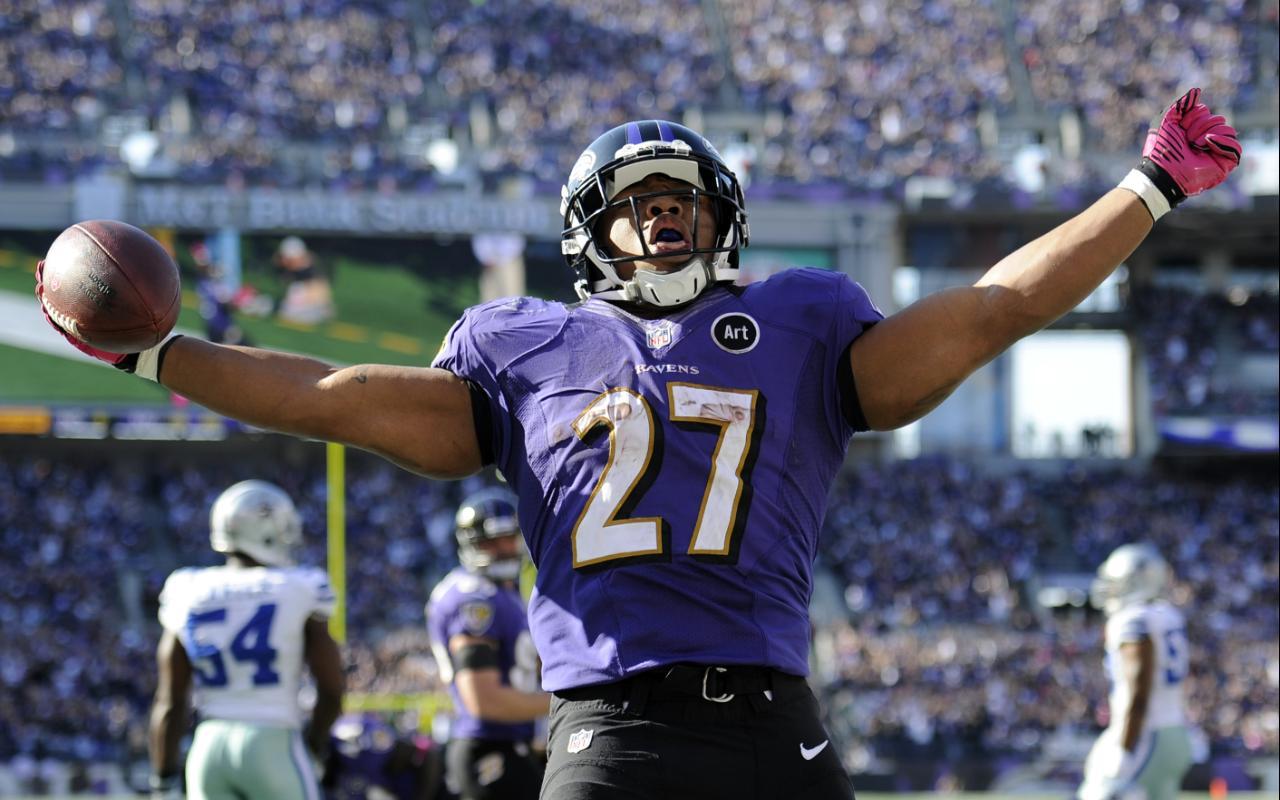 [NFL] Baltimore Ravens 2013