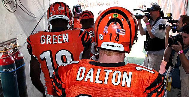 [NFL] Cincinnati Bengals 2013