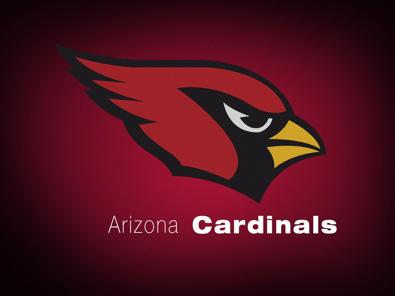 [NFL] Top (e Flop) della stagione: Arizona Cardinals