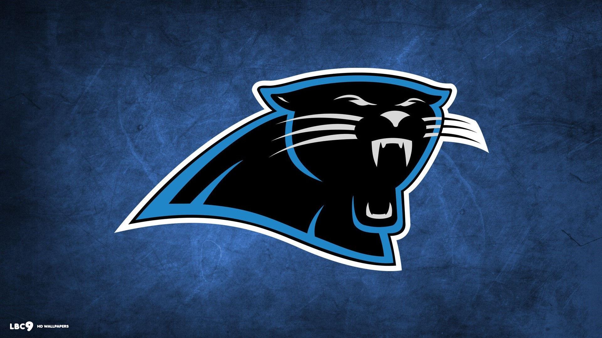 [NFL] Preview 2015: Carolina Panthers