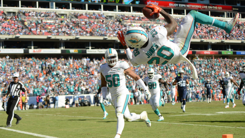 Reshad Jones Miami Dolphins