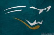 NFL Preview 2019: Jacksonville Jaguars