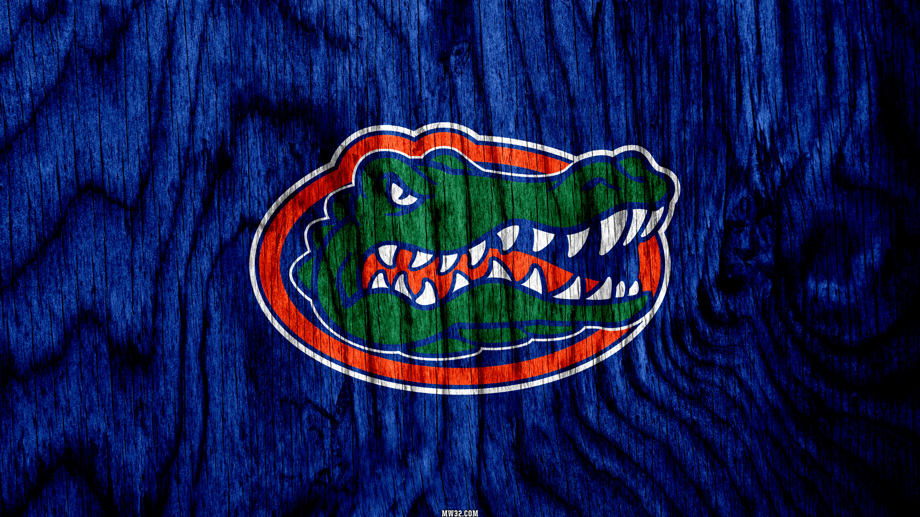 Preview NCAA 2016: Florida Gators