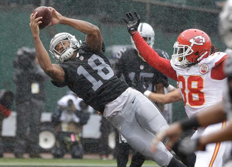 andre-holmes-raiders