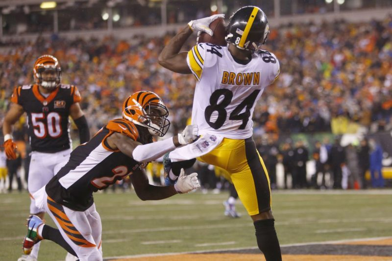 brown steelers bengals