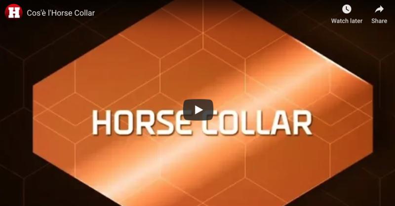 Horse Collar video